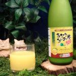 バカ売れしている沖縄のシークヮーサージュース飲んでみました!